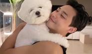 朴叙俊大哂爱犬辛巴,网友把重点放在他结实的二头肌