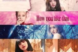 网友列点YG歌手身份出道的好处,你也认同吗?